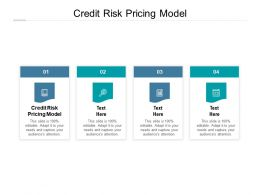 Credit Risk Pricing Model Ppt Powerpoint Presentation Styles Show Cpb