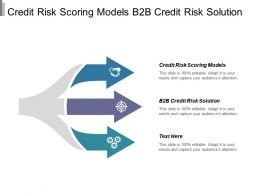 Credit Risk Scoring Models B2b Credit Risk Solution Cpb