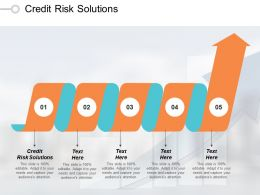 Credit Risk Solutions Ppt Powerpoint Presentation Infographic Template Structure Cpb