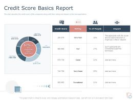Credit Score Basics Report Ppt Powerpoint Presentation Infographic Template