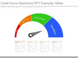 Credit Score Dashboard Ppt Examples Slides