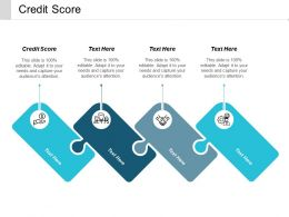 Credit Score Ppt Powerpoint Presentation Pictures Influencers Cpb