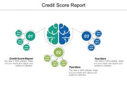 Credit Score Report Ppt Powerpoint Presentation Icon Outline Cpb