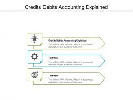 Credits Debits Accounting Explained Ppt Powerpoint Presentation Icon Ideas Cpb