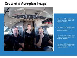 Crew Of A Aeroplan Image
