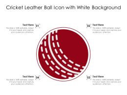 Cricket Leather Ball Icon With White Background