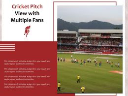 Cricket Pitch View With Multiple Fans