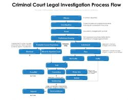 Criminal Court Legal Investigation Process Flow