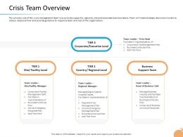 Crisis Management Capability Crisis Team Overview Continuity Plan Ppt Summary