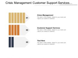 Crisis Management Customer Support Services Advertising Campaign Strategies