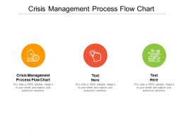Crisis Management Process Flow Chart Ppt Powerpoint Presentation Graphic Cpb