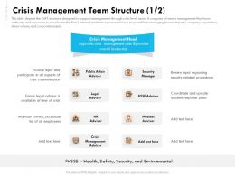 Crisis Management Team Structure Security Ppt File Elements