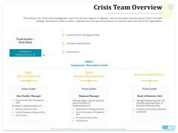 Crisis Team Overview Continuity Plan Ppt Powerpoint Presentation Clipart