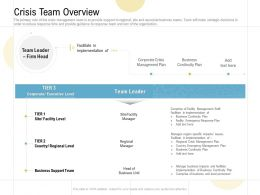 Crisis Team Overview Ppt Powerpoint Presentation Show Example