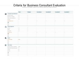 Criteria For Business Consultant Evaluation