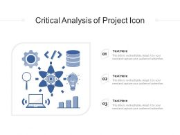 Critical Analysis Of Project Icon