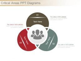 Critical Areas Ppt Diagrams