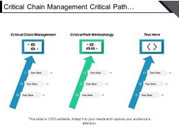 Critical Chain Management Critical Path Methodology Market Research Cpb