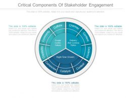 Critical Components Of Stakeholder Engagement Diagram Slides