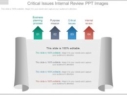 Critical Issues Internal Review Ppt Images