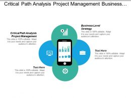 Critical Path Analysis Project Management Business Level Strategy Cpb