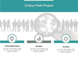 Critical Path Project Ppt Powerpoint Presentation Professional Graphics Design Cpb
