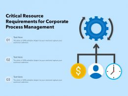 Critical Resource Requirements For Corporate Process Management