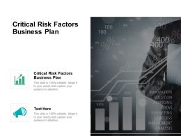 Critical Risk Factors Business Plan Ppt Powerpoint Presentation Icon Visuals Cpb