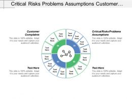 Critical Risks Problems Assumptions Customer Complaints Process Controls