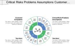 Critical Risks Problems Assumptions Customer Complaints Process Controls