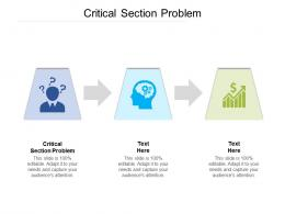 Critical Section Problem Ppt Powerpoint Presentation Gallery Styles Cpb