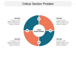 Critical Section Problem Ppt Powerpoint Presentation Inspiration Graphic Tips Cpb
