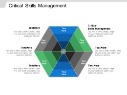 Critical Skills Management Ppt Powerpoint Presentation Gallery Format Cpb