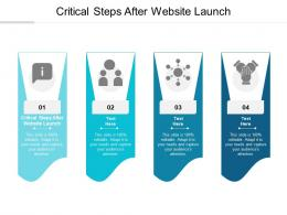 Critical Steps After Website Launch Ppt Powerpoint Presentation Show Microsoft Cpb