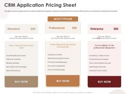 CRM Application Pricing Sheet CRM Application Ppt Structure