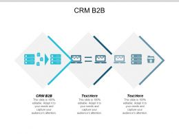 CRM B2B Ppt Powerpoint Presentation Infographic Template Background Images Cpb