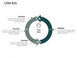 Crm B2b Ppt Powerpoint Presentation Pictures Design Inspiration Cpb