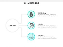 CRM Banking Ppt Powerpoint Presentation Professional Format Cpb