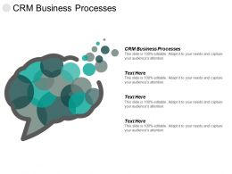 Crm Business Processes Ppt Powerpoint Presentation Pictures Display Cpb