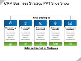 Crm Business Strategy PPT Slide Show