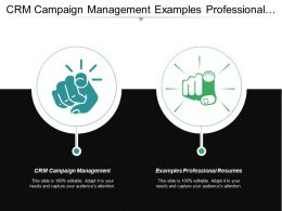 Crm Campaign Management Examples Professional Resumes Professional Resumes Cpb