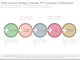 Crm Concept Strategy Example Ppt Examples Professional