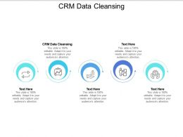 CRM Data Cleansing Ppt Powerpoint Presentation File Grid Cpb