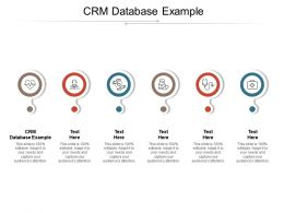 CRM Database Example Ppt Powerpoint Presentation Slides Summary Cpb