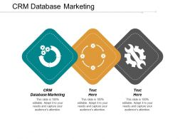 CRM Database Marketing Ppt Powerpoint Presentation File Introduction Cpb