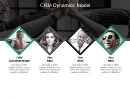 CRM Dynamics Model Ppt Powerpoint Presentation Infographics Elements Cpb