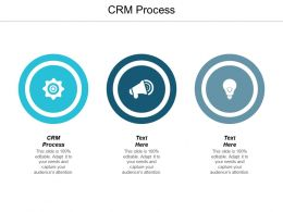 CRM Process Ppt Powerpoint Presentation Summary Graphic Tips Cpb