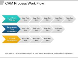 Crm Process Work Flow Ppt Examples Slides