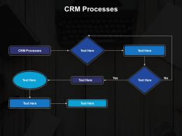 CRM Processes Ppt Powerpoint Presentation File Outline Cpb