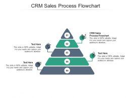 CRM Sales Process Flowchart Ppt Powerpoint Presentation Professional Images Cpb